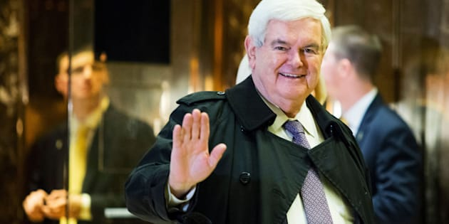 Former House Speaker Newt Gingrich has made a few gaffes as an informal adviser to President-elect Donald Trump.