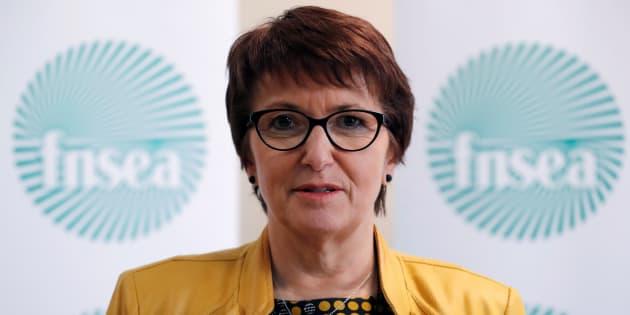 La présidente de la FNSEA Christiane Lambert à Paris le 13 avril 2017.