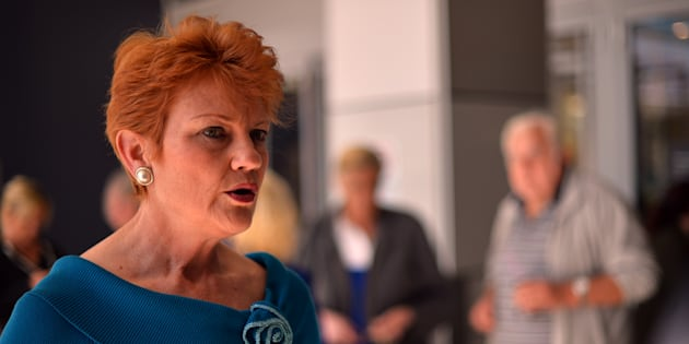 George Brandis says Pauline Hanson's views are shared by    many in Australia.