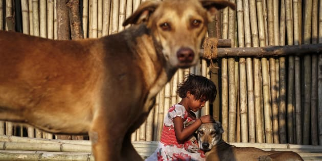 Shazia, a six year-old-girl, plays with street dogs on bamboo sticks at a timber market in Mumbai March 13, 2014. REUTERS/Danish Siddiqui (INDIA - Tags: SOCIETY ANIMALS TPX IMAGES OF THE DAY)