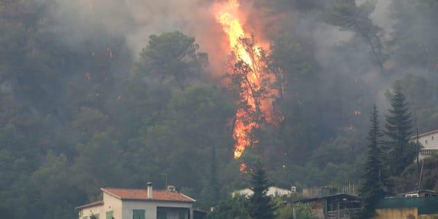 Les flammes progressant à Castagniers près de Nice le 17 juillet 2017.