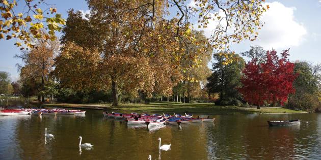Le lac Daumesnil ne sera pas transformé en zone de baignade