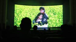 Karva Chauth: Desperately Seeking Romance… And Embracing