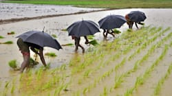 Indian Monsoon To Hit 98% Of Its Long-Term Average In 2017, Predicts