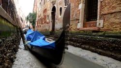 Les canaux de Venise se sont vidés (et la