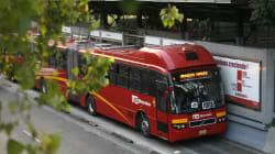 No hay pretextos: Metro y Metrobús gratis el 1 de julio de 08:00 a 18:00