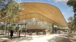 La nuova sede di Apple costata 5 miliardi è tutta in vetro, ma i dipendenti ci sbattono