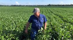 Los aranceles de Trump a China ya incomodan a los agricultores que votaron por