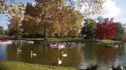 Pour le moment, les Parisiens ne pourront pas se baigner dans le lac Daumesnil, faute