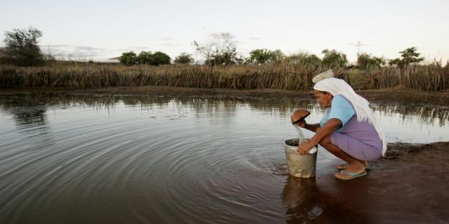 """12% dos processos que tramitam sobre horas in itinere são relacionados a """"agropecuária, extração vegetal e pesca""""."""