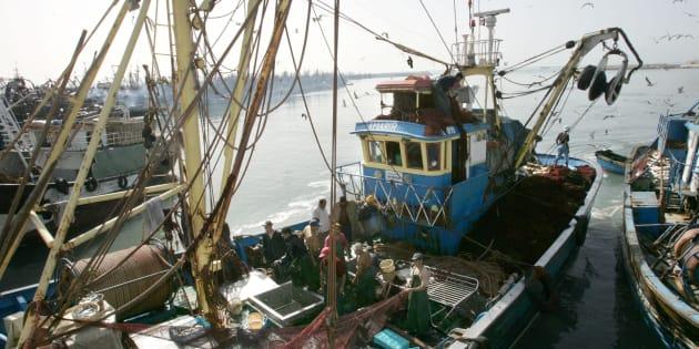 Pescadores en el puerto de El Aaiún, en el Sáhara Occidental