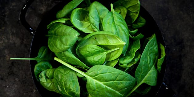 Baby Spinat Blätter auf schwarzem Hintergrund