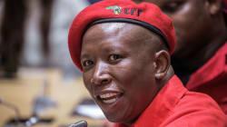 Relax, Folks, AfriForum Is NOT Prosecuting Julius