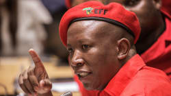 The EFF: South Africa's Curious