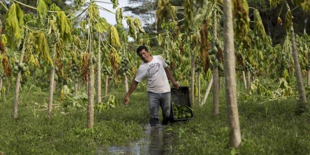 Mesmo com Cadastro Ambiental Rural, categorias vulneráveis não conseguem regularizar suas áreas