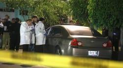 """¿Qué es lo que provoca la """"epidemia de homicidios"""" en"""