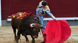 El 52% de los españoles cree que deberían prohibirse los