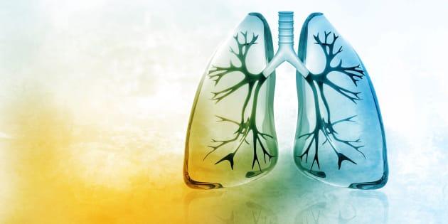Chacun des milliards de cellules qui constituent notre organisme a besoin d'oxygène (O) pour réaliser ses fonctions et lorsqu'elles ont utilisé cet oxygène, elles doivent se débarrasser d'un gaz nocif qu'est le dioxyde de carbone (CO2).