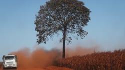 Desmatamento zero ou desmatamento ilegal zero: Uma falsa