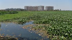 NGT Directs Closure Of 76 Polluting Industries Around Bengaluru's Bellandur