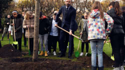 Édouard Philippe a planté son arbre à Matignon et il a