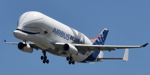 Le Beluga XL a un air de baleine, et c'est grâce aux salariés d'Airbus.