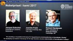 El Nobel Química para tres científicos que abrieron los ojos a la