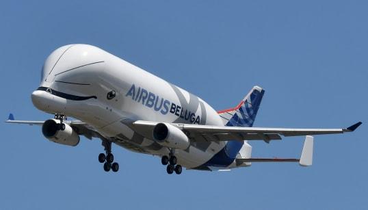Les images du premier vol du Beluga XL, le nouveau géant
