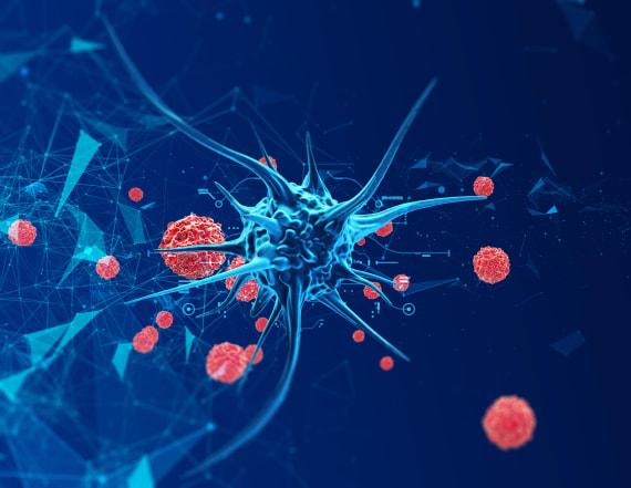 New cancer drug targets mutations