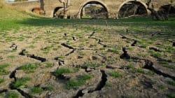 A seca que atinge 100% de Portugal mostra que não levamos a mudança climática a