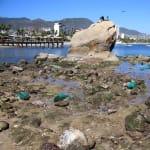 El mar se aleja en playas de Veracruz, Sonora y