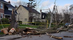 Wind Storm Leaves 3 Dead, Thousands Without Power In Ontario And