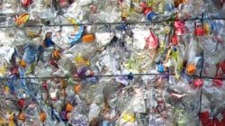Ils recyclent des bouteilles en plastique pour payer des tickets de