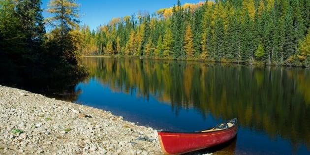 Composée de cinq MRC et de quatre circonscriptions provinciales: Arthabaska, Drummond-Bois-Francs, Johnson et Nicolet-Bécancour, la région 17 se situe au sud du fleuve entre la Montérégie et Chaudière-Appalaches.