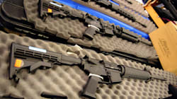 Interdiction des armes d'assaut: Goodale «ouvert», mais pas dans