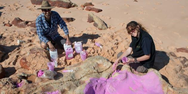 """Dans le """"Jurassic Park australien"""", des centaines d'empreintes de dinosaures ont été analysées."""