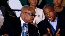 Public Protector Must Investigate Supra's Cattle Gift To Zuma -- EFF,