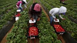 Salario mínimo ha perdido 75% de su valor en casi cuatro