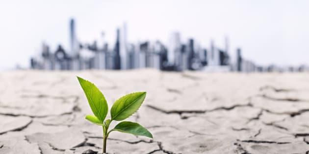 Même un réchauffement climatique limité à 2° aura une incidence importante.