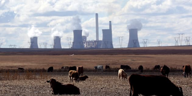 Cows graze as steam rises from the cooling towers of Matla Power Station, a coal-fired power plant operated by Eskom in Mpumalanga province, South Africa, May 20,2018. REUTERS/Siphiwe Sibeko