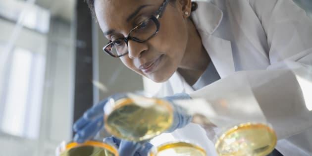 La «politisation de la recherche», qui oriente le financement en fonction des priorités perçues au détriment de la recherche menée par des chercheurs indépendants, explique en grande partie ce recul.