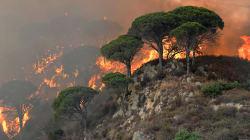 Des pompiers italiens allumaient des feux pour travailler