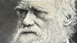 Lettre de Charles Darwin: