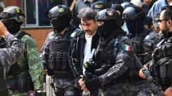 EN FOTOS: la detención del Licenciado, Dámaso