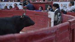 Las corridas de toros en CDMX podrían tener las horas