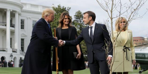 L'arbre de Macron et Trump pourrait attendre jusqu'à 2 ans avant d'être replanté à la Maison Blanche.