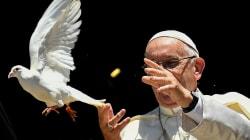 Papa Francisco participará en proceso de pacificación de
