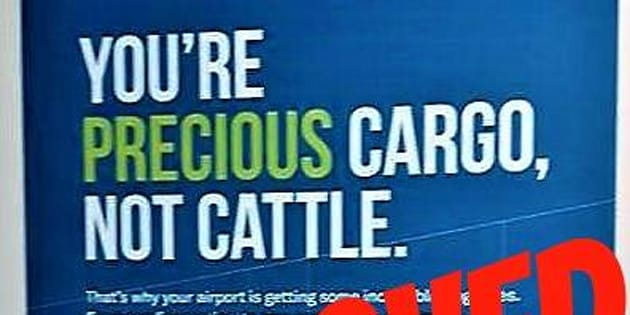 "Activist Len Goldberg said the message outlined by an airport ad is ""insulting"" to cows."