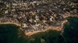 L'incendie qui a fait plus de 80 morts en Grèce soupçonné d'être