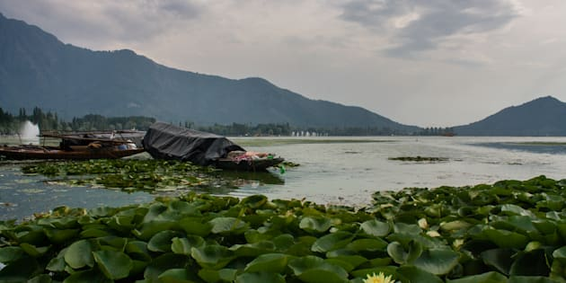 SRINAGAR, KASHMIR, INDIA - SEPTEMBER 7: Boats are moored to the bank of deserted Dal lake on September 7, 2017 in Srinagar, the summer capital of Indian administered Kashmir, India.